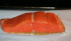 kingsalmon
