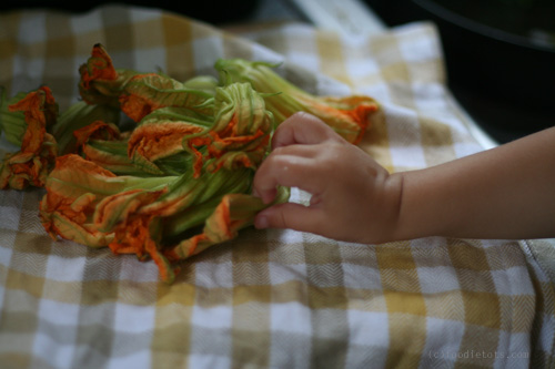 foodie tot loves squash blossoms