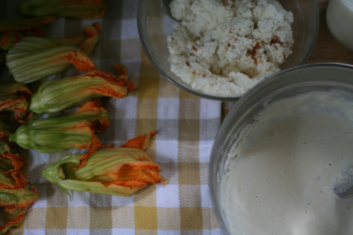 how to fry squash blossoms