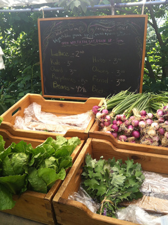 queens farmstand