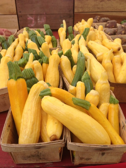golden zucchini and summer squash | foodietots.com