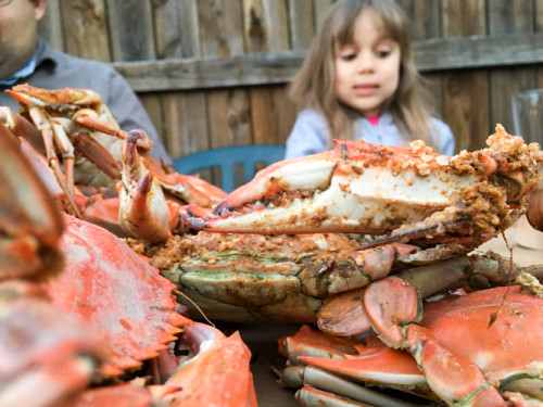 kid-friendly crab houses | foodietots.com